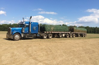 Load of Sod